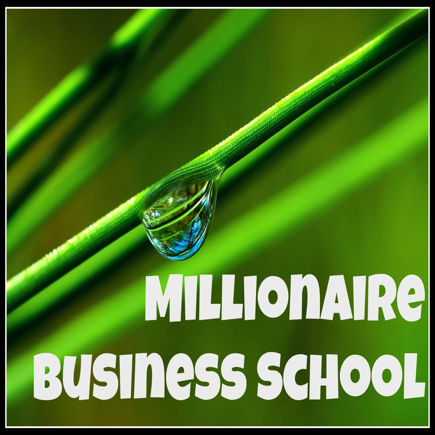 Millionaire Business School